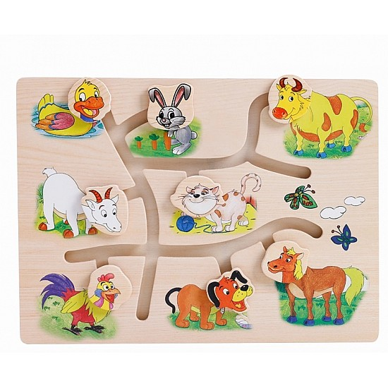 Animal Cognitive Board