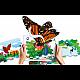 Interactive bird puzzle 12 pieces